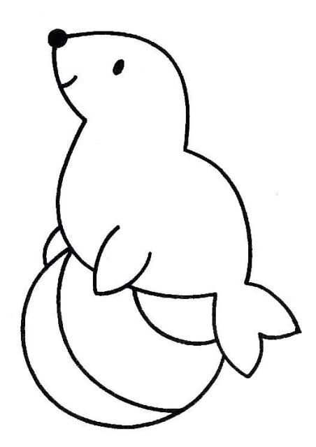 Kleurplaat Kleurplaten Kleurrijke Tekeningen Zeehond Knutselen