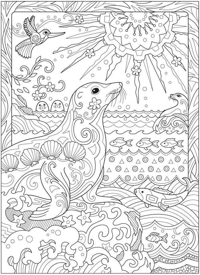 Kleurplaat Vissen Zeehond Zon Welcome To Dover Publications Avec