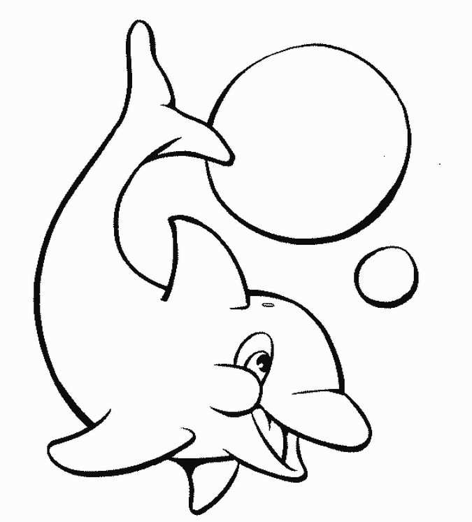 Image Detail For Printable Dolphins Animal Coloring Pages