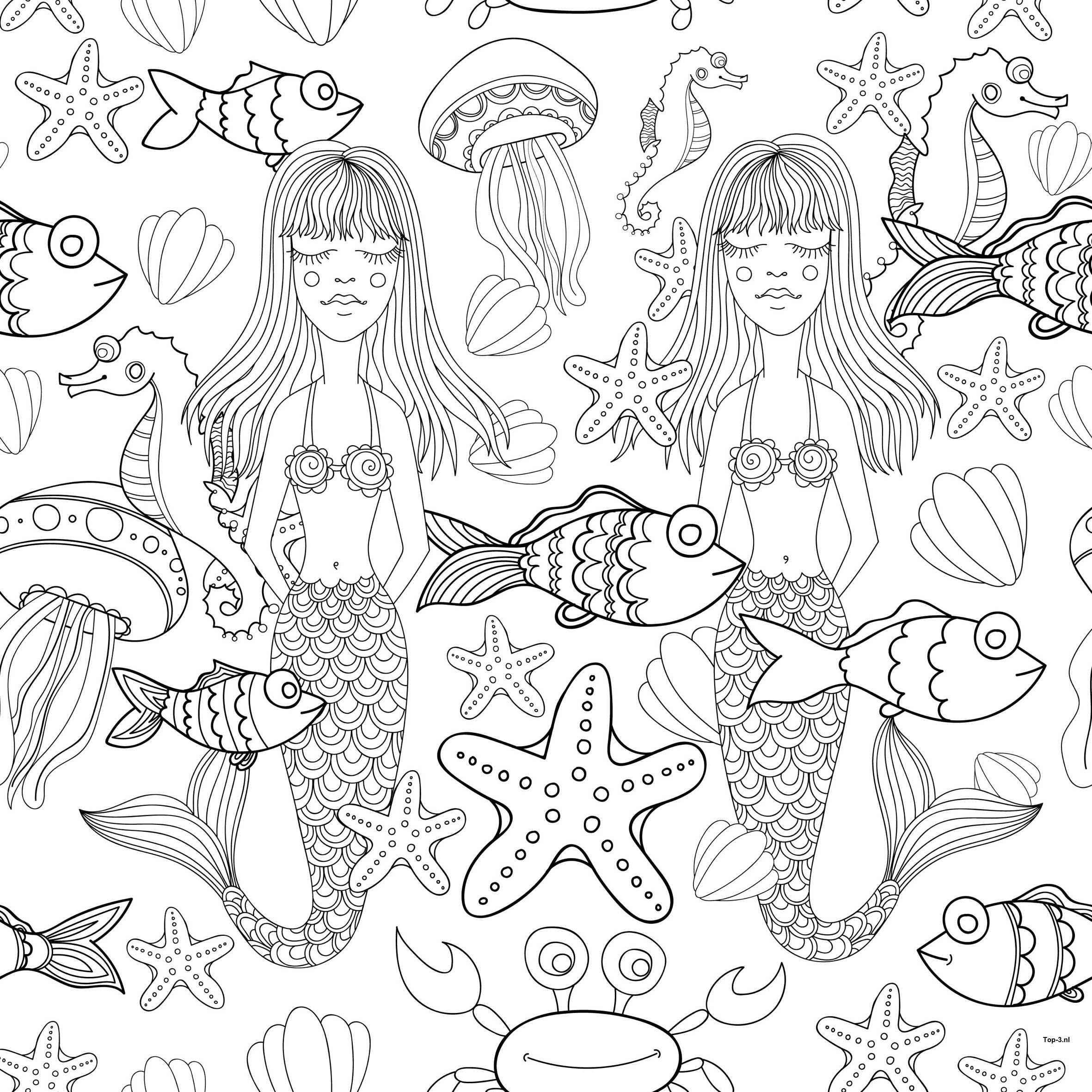Kleurplaten Prinses Sprookjes Zeemeermin Top 3 Kado En