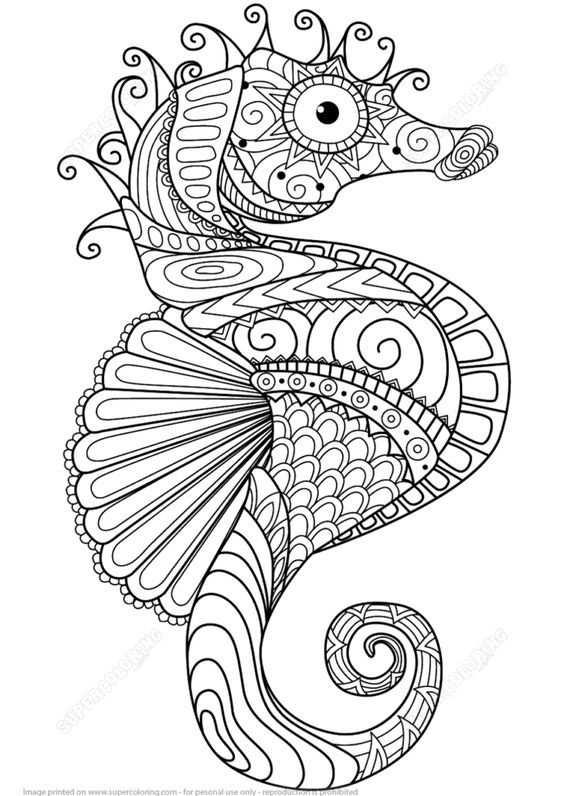 Seahorse Coloring Pages Free Coloringpages Coloringpagesfree