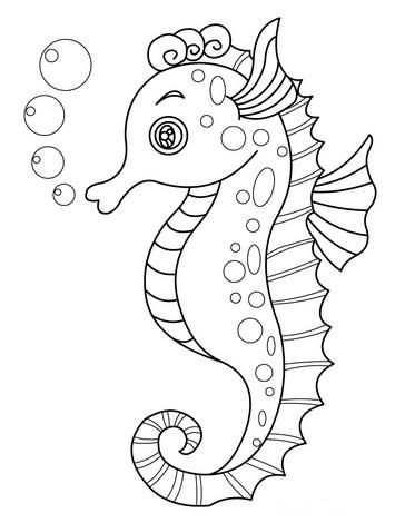 Zeedieren Kleurplaten Kleurplaten Dieren Kleurplaten Zeedieren