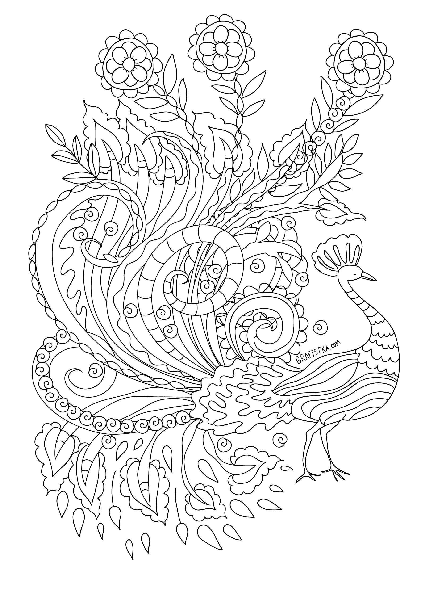 Raskraska Pavlin Kleurplaten Prints Kleurplaten Voor Volwassenen