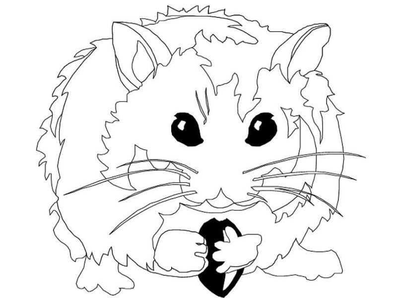 Kleuterdigitaal Hamster Kleurplaat 01 Kleurplaten