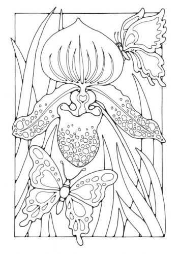 Kleurplaat Lelie Met Vlinders Kleurplaten Dieren Kleurplaten