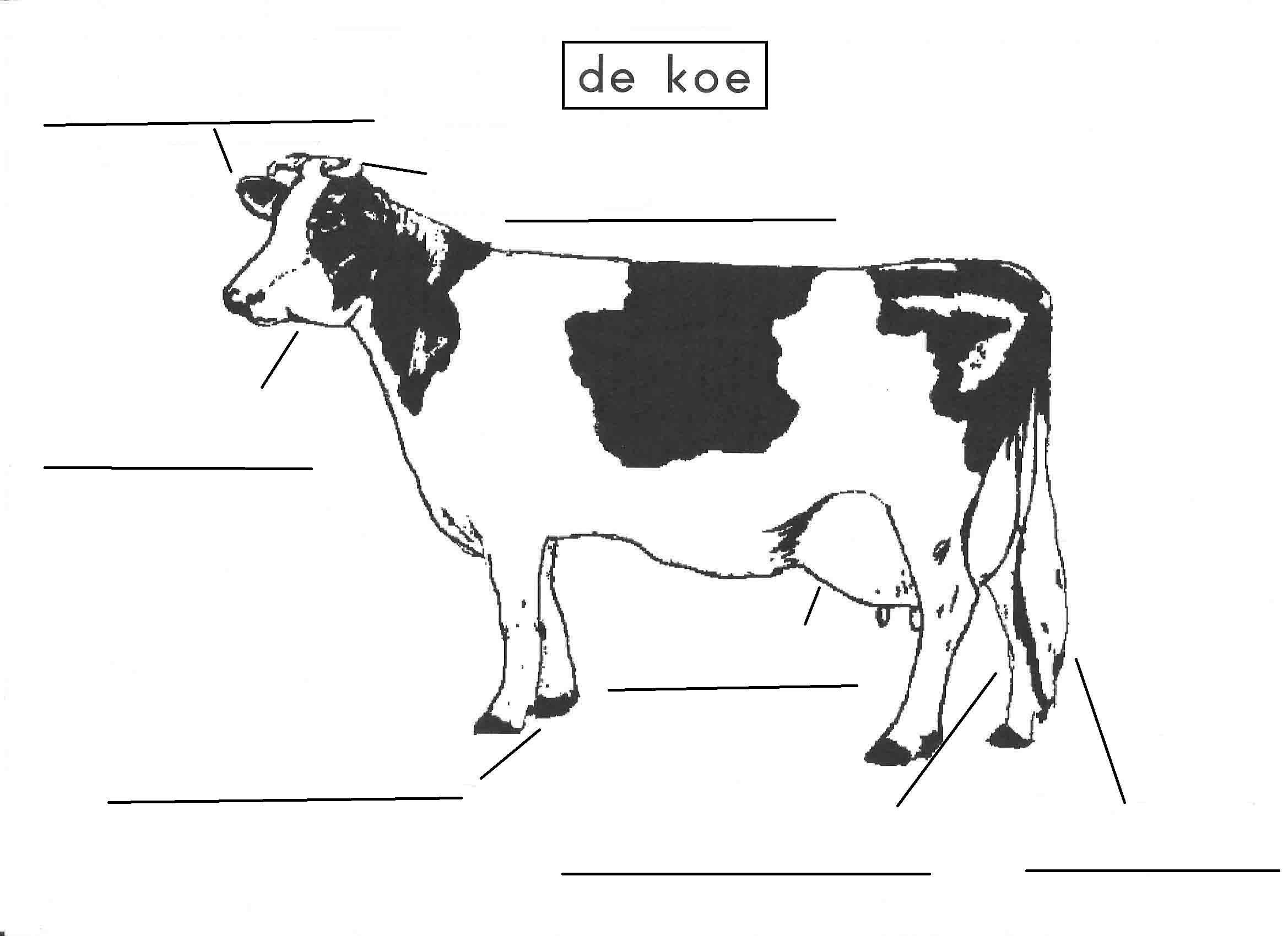 Pin Van Miranda Wedekind Onderwijsbege Op 21e Eeuws Leren Op De
