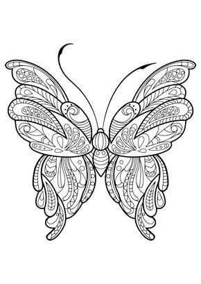 Volwassen Vlinder Kleurboek Met Afbeeldingen Mandala