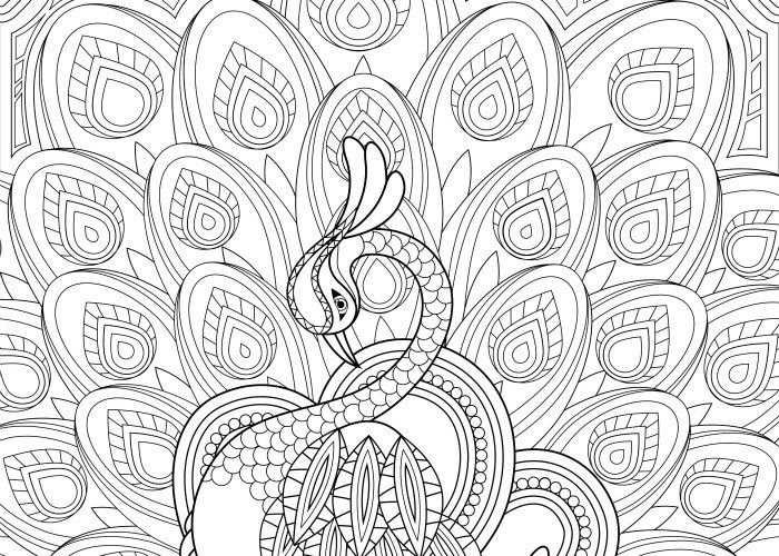 Volwassen Kleurplaat Mandala 3 Volwassen Kleurplaten Mandala