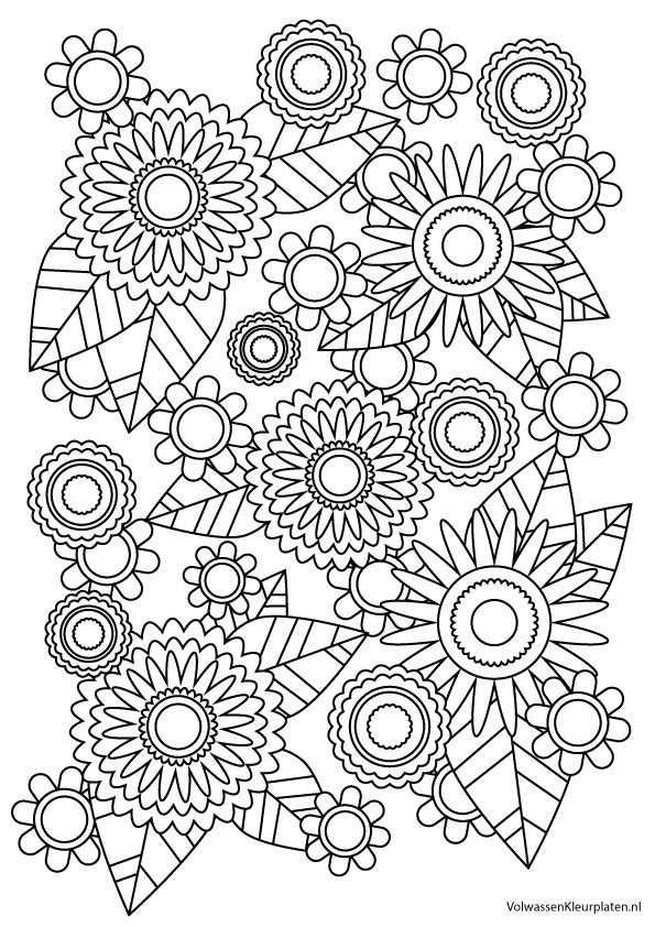 Bloemen Met Afbeeldingen Kleurplaten Kleurrijke Tekeningen