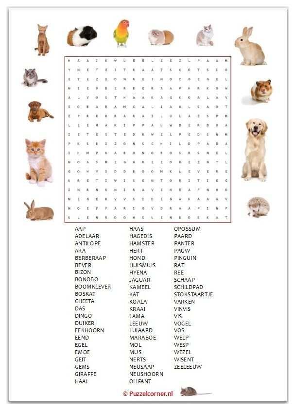 Woordzoeker Dieren In 2020 Met Afbeeldingen Dieren Spellen