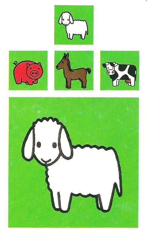 Schaap Met Afbeeldingen Boerderij Thema Kinderboerderij
