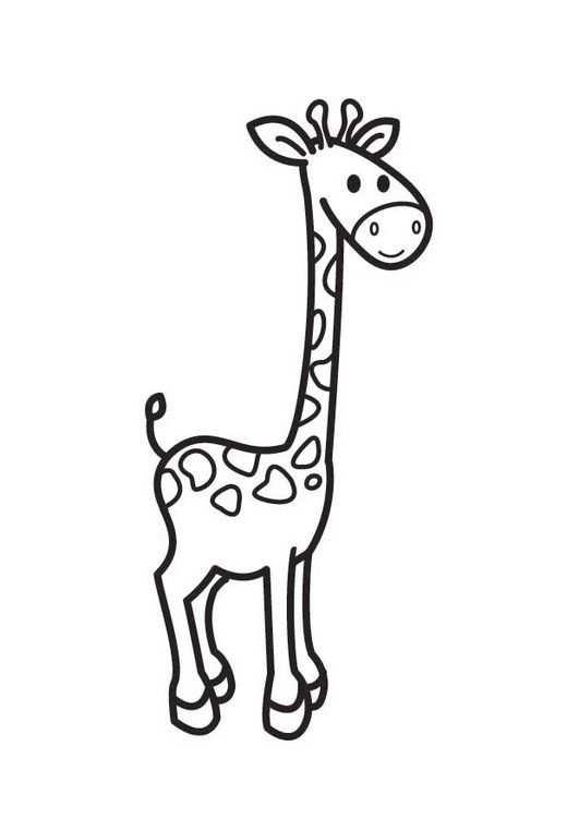Kleurplaat Giraf Met Afbeeldingen Giraffe Tekening Olifant