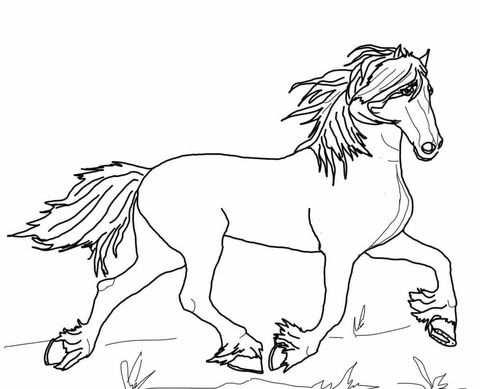 Fries Paard Kleurplaat Dieren Kleurplaten Paard Tekeningen