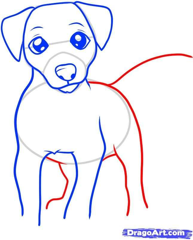How To Draw A Jack Russell Terrier By Dawn Dieren Tekenen