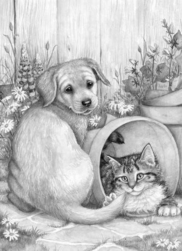 Puppy And Kitten Met Afbeeldingen Dieren Tekenen Katten