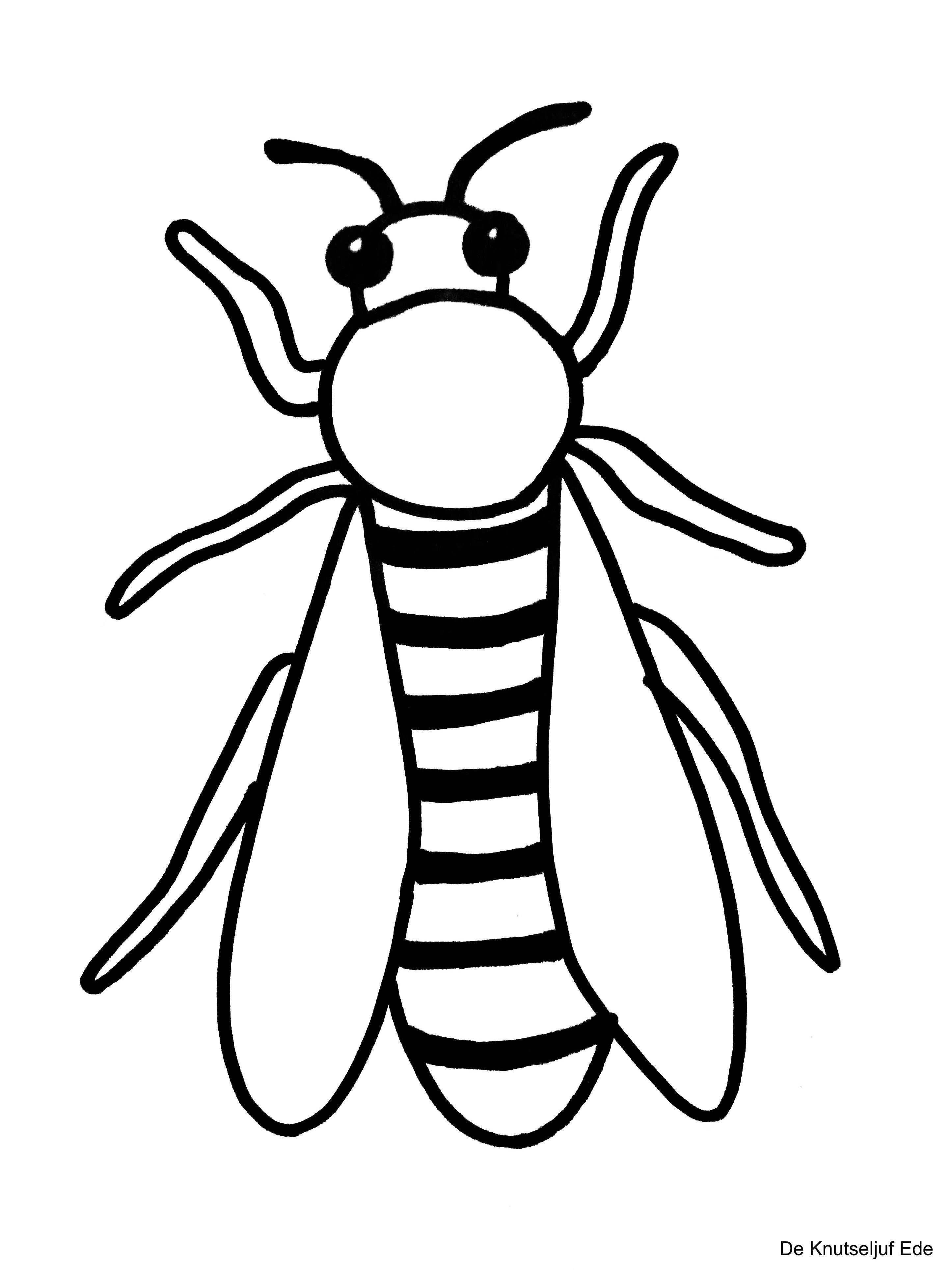 Kleurplaten Kriebelbeestjes Gratis Kleurplaat Insecten