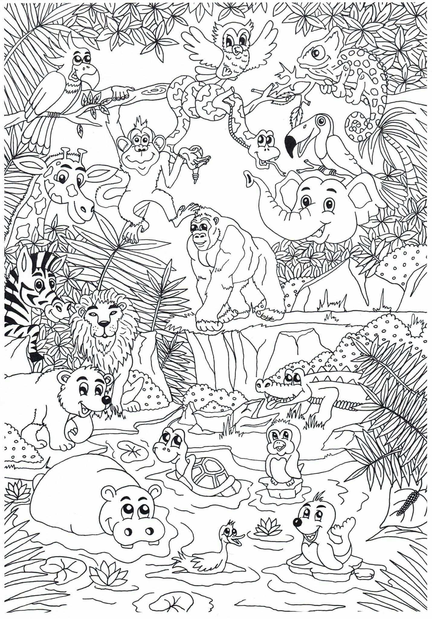 Dierentuin Zoo Animals Met Afbeeldingen Kleurplaten Dieren
