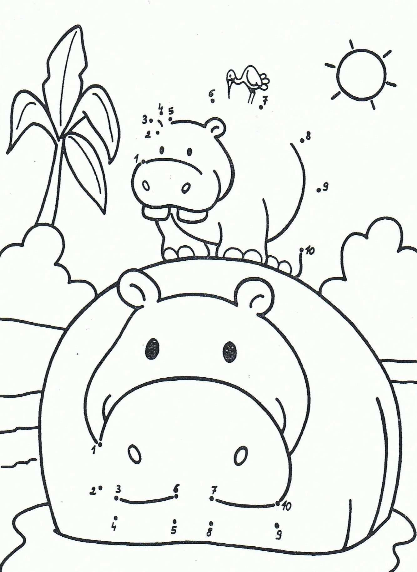 Kleurplaat Van Een Nijlpaard 1 10 Dierentuindieren De