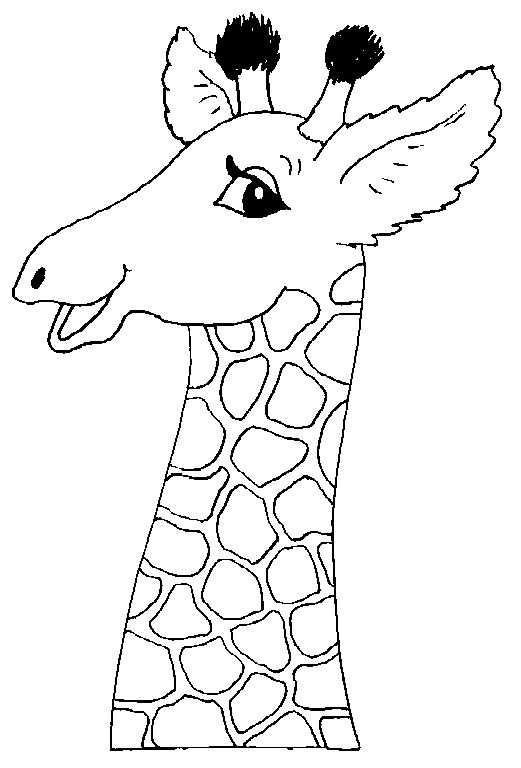 Giraffe Met Afbeeldingen Giraffe Tekening Kleurplaten Dieren