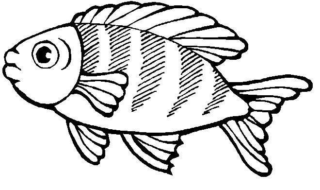 Kleurplaat Vissen Vissen Met Afbeeldingen Kleurplaten Dieren