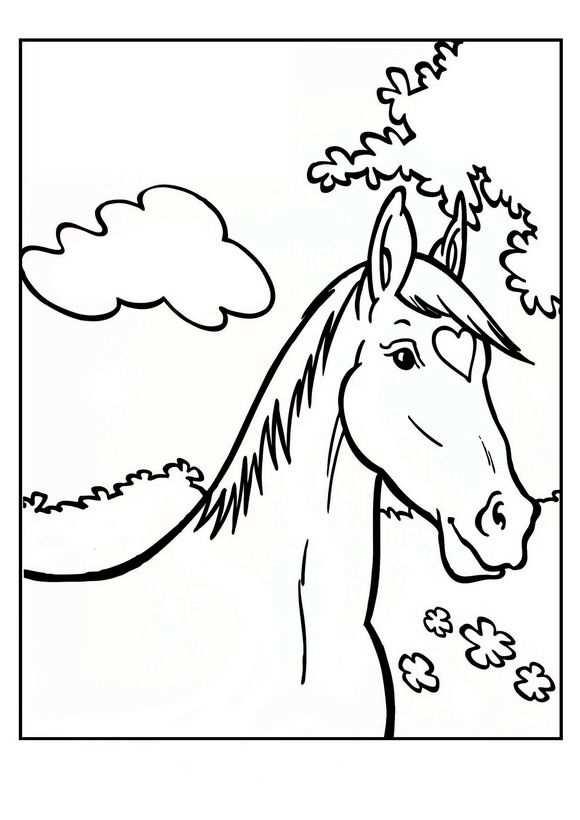 Kleurplaat Paard Amika Kleurplaten Paarden Paardenhoofd