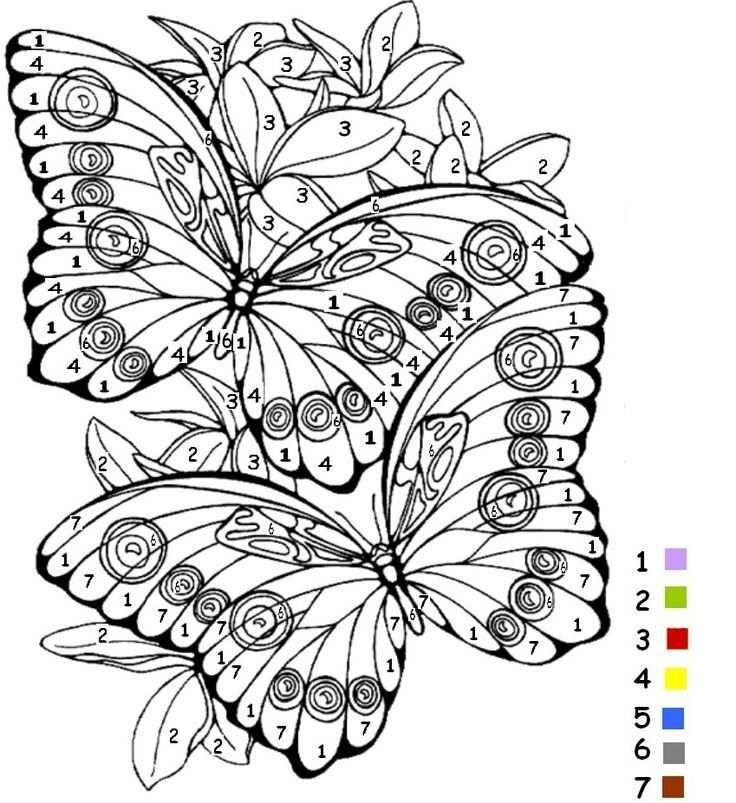 vlinder op bloem kleurplaat