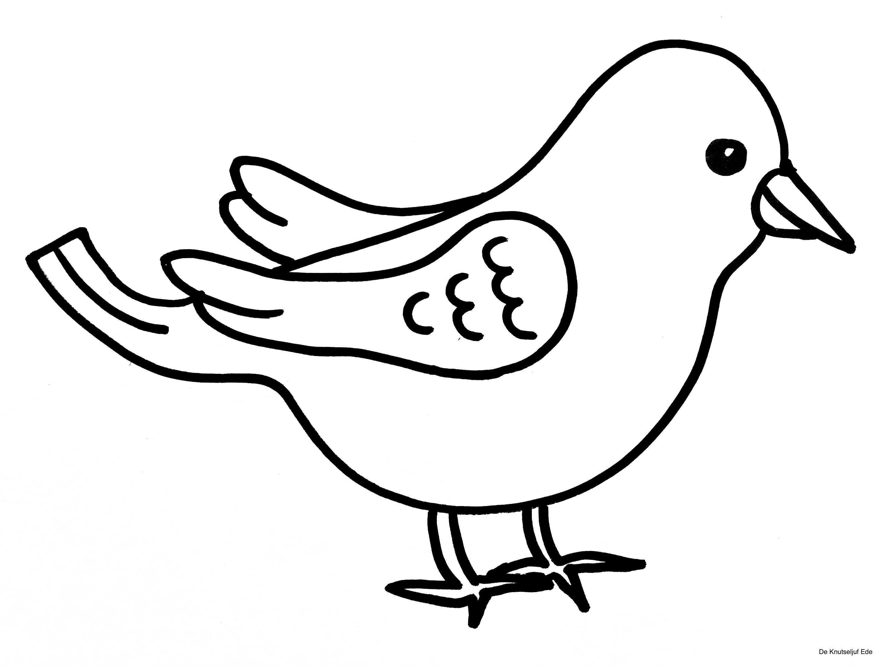 Kleurplaten Vogels In 2020 Met Afbeeldingen Vogels