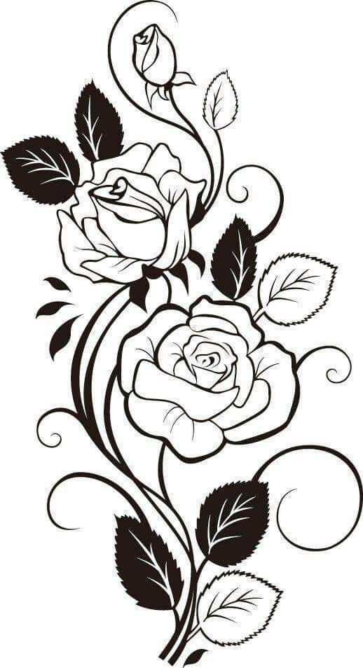 Pin Van Asher Burley Op Stencil Rozen Tekening Rozen Roos