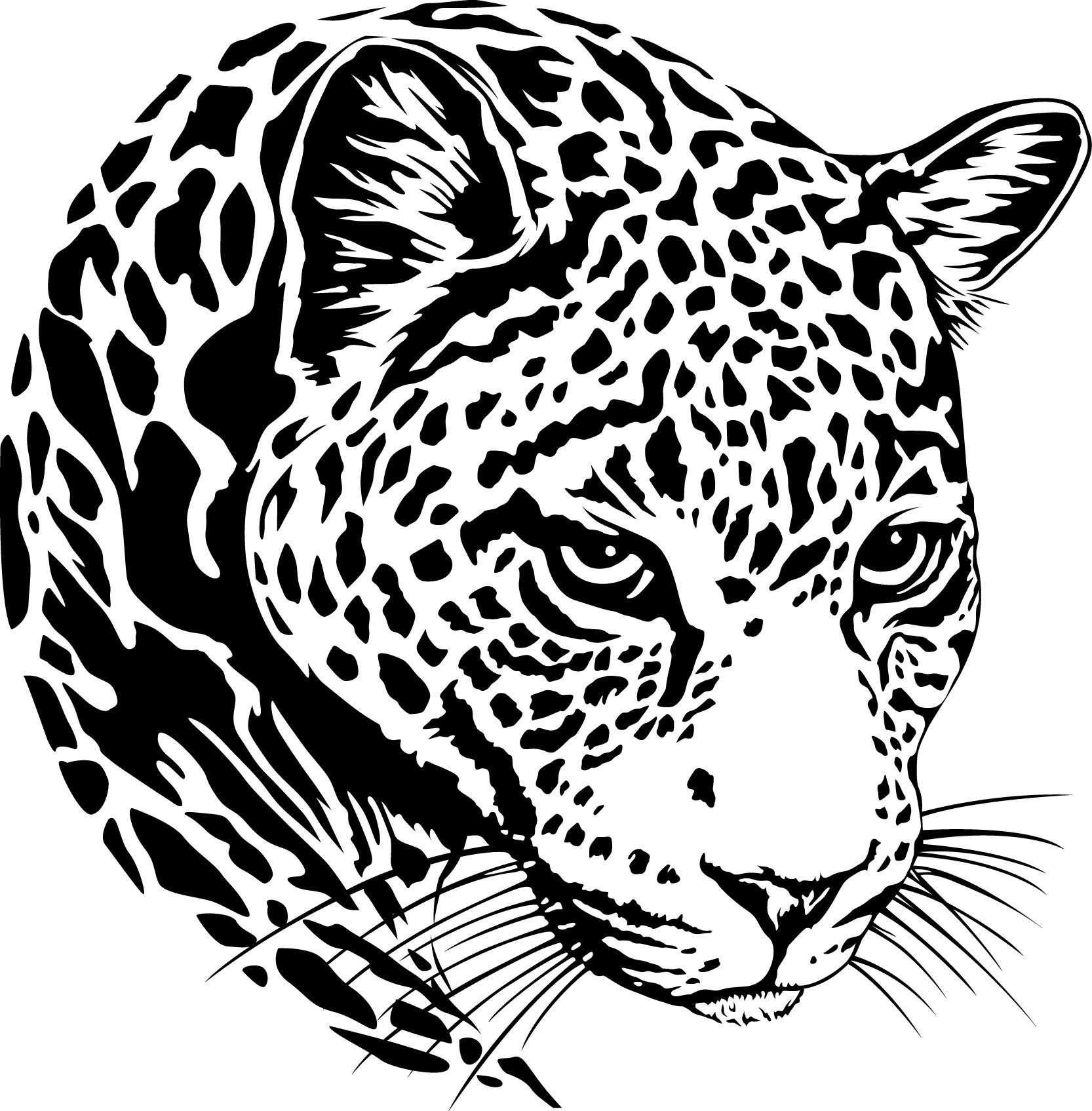 Jaguar Hoofd Logo Svg Silhouet Vinyl Snijden Bestand Dfx Etsy
