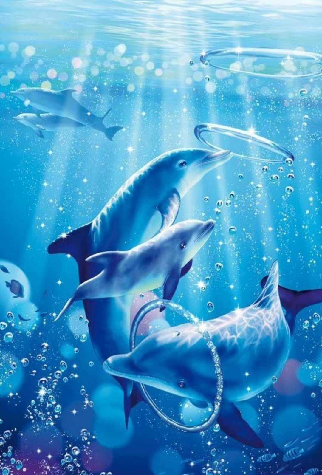 Idee Van Hester Sonneveld Op Wilde Dieren In 2020 Dolfijnen